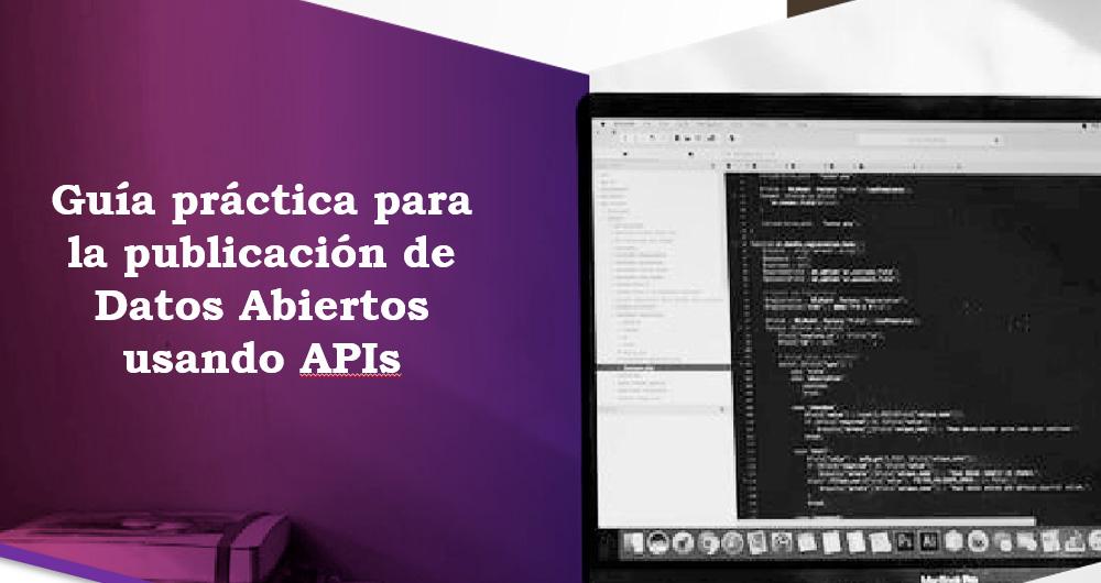 Guía API