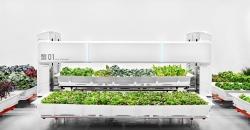 datos abiertos y agricultura