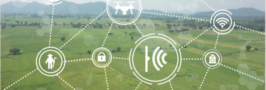 Datos abiertos y el derecho a la tierra