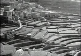 Fotografía de paisaje agrario