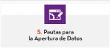 5. Pautas para la Apertura de Datos