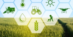 informe agricultura Marín