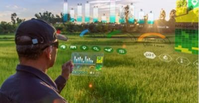 MAPAMA, una importante fuente de datos sobre agricultura y medio ambiente