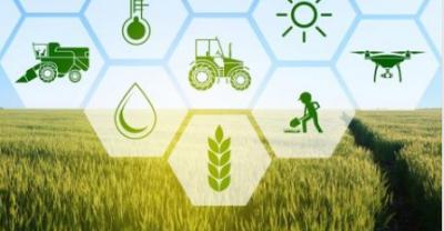 Cómo los datos abiertos pueden impulsar el sector agrícola y forestal